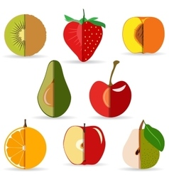 Sliced fruit vector
