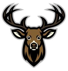 deer head mascot vector image