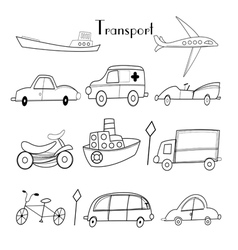 Different types of transport vector