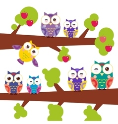 Set bright colorful owls on the branch of apple vector