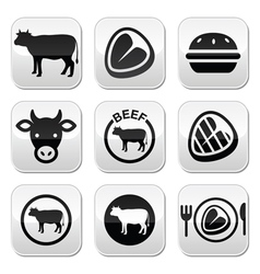 Beef meat cow buttons set vector image vector image