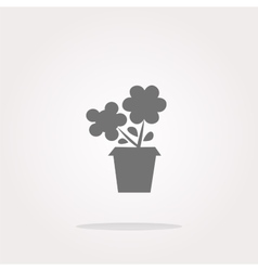 Flower web buttons for website or app vector image