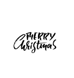 hand drawn phrase merry christmas modern dry vector image vector image
