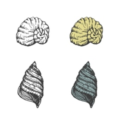 Set of hand-drawn seashells eps8 vector