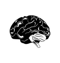 Brain hand drawn isolated on a white vector