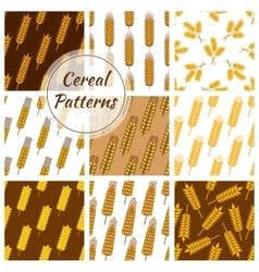 Cereal grain seamless patterns set vector image