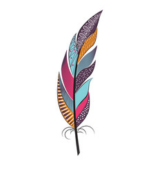 large colored feather with patterns vector image vector image