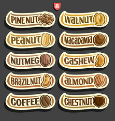 Set of nuts labels vector