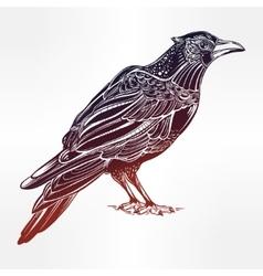 Detailed hand drawn raven bird vector