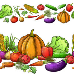 Vegetables seamless borders vector