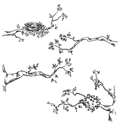 Set of hand drawn branches vector image vector image