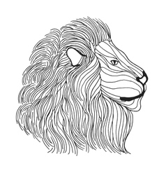 Zentangle stylized lion head sketch for tattoo or vector