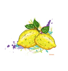 lemons with colorful splashes vector image
