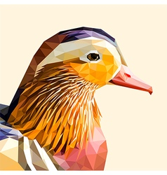 Mandarin duck portrait vector