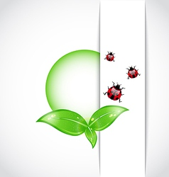 Green leaves ladybugs background vector