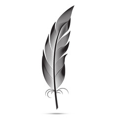 A large black and white feather graphic arts vector