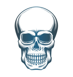 Image of the skull vector