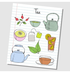 tea doodles lined paper colored vector image vector image
