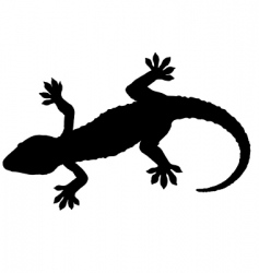 gecko silhouette vector image