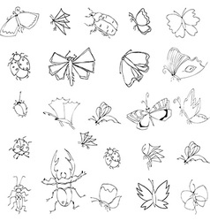 Collection of hand drawing insects vector
