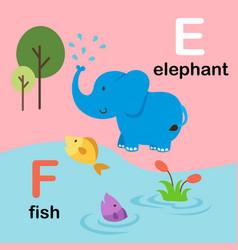 alphabet letter f-fish e-elephant vector image