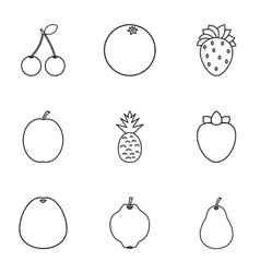 Farm fruits icons set outline style vector