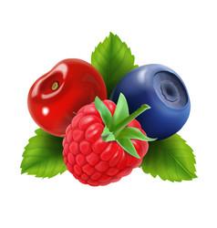ripe berries raspberry blueberries and cherry vector image vector image