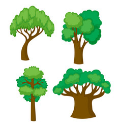 Trees in four different shapes vector