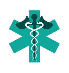 Caduceus medicine care symbol vector