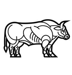 Belgian blue bull vector