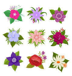 decorative nature flower set vector image vector image