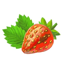 picture of Strawberry vector image vector image