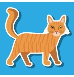 Cute cat design vector
