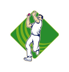 Cricket bowler bowling ball front vector