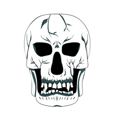 contour silhouette of the skull vector image