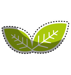 Sticker green leaves environment care icon vector