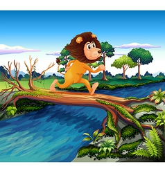 A lion running while crossing the river vector image