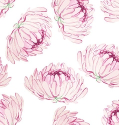 Seamless pattern with pink chrysanthemums vector