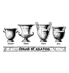 Forms of kraters greek vessel shapes vector