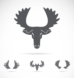 image of an moose head vector image