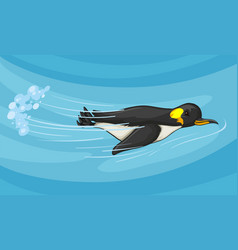 Penguin swimming under the sea vector