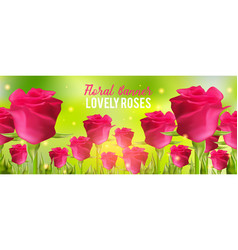 Pink roses background realistic flowers and green vector
