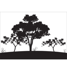 Silhouettes of big tree vector