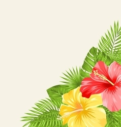 Vintage background with colorful hibiscus flowers vector