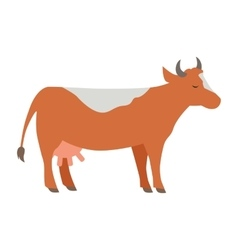 Cow flat design on white vector