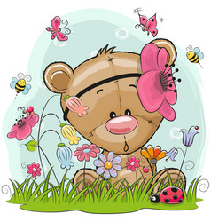 cute cartoon teddy on a meadow vector image vector image