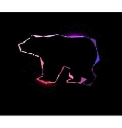 Shining bear vector image vector image