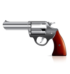 Object revolver vector