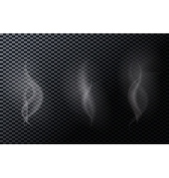 Naturalistic smoke isolated on dark background vector