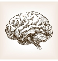 Human brain sketch style vector